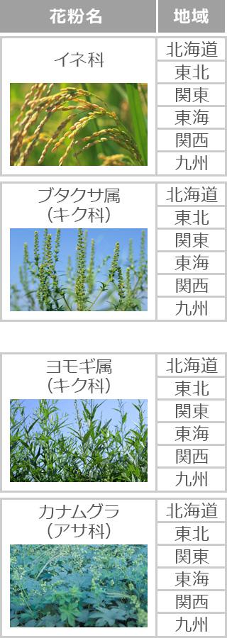 花粉カレンダー|花粉症ナビ
