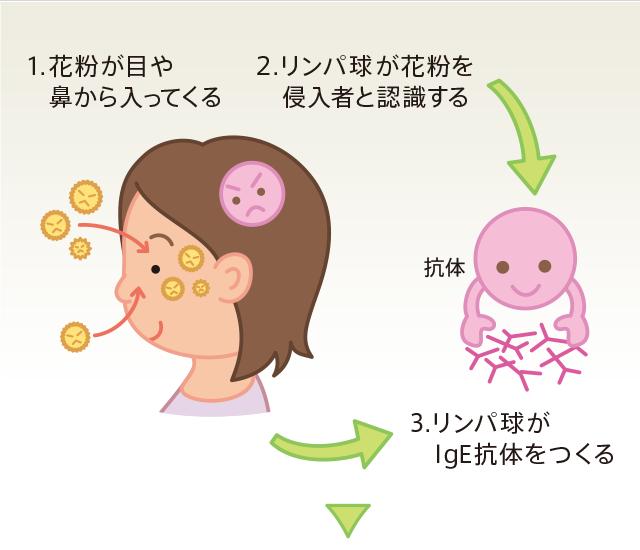 症 目 花粉
